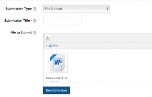 Assignment submission upload screen